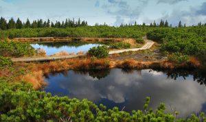 Lovrenška jezera
