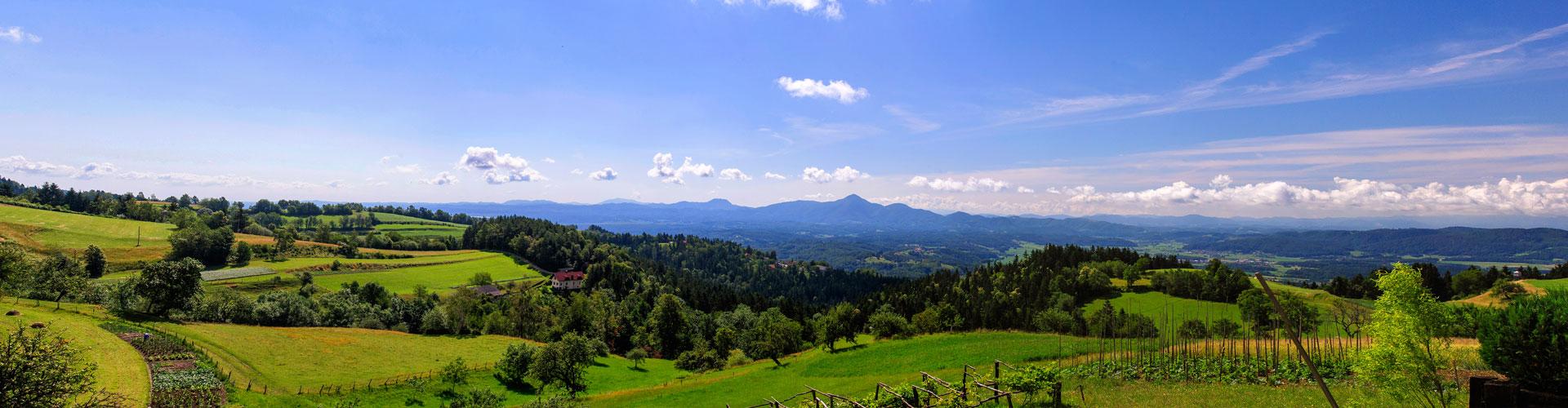 zeleni-dragul-kebelj-panorama